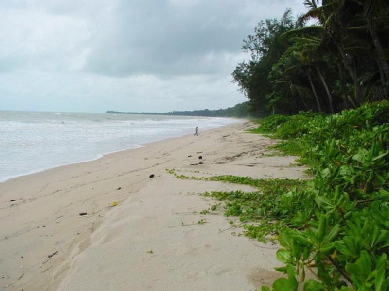 หาดบางสัก